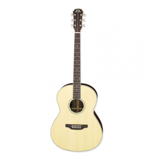 A-48CE aria gitaar